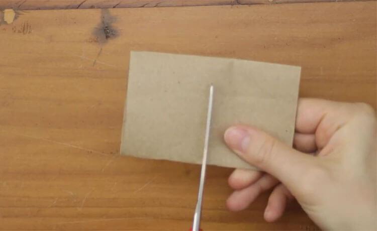 Materiais como o papelão são perfeitos para fazer uma sementeira.