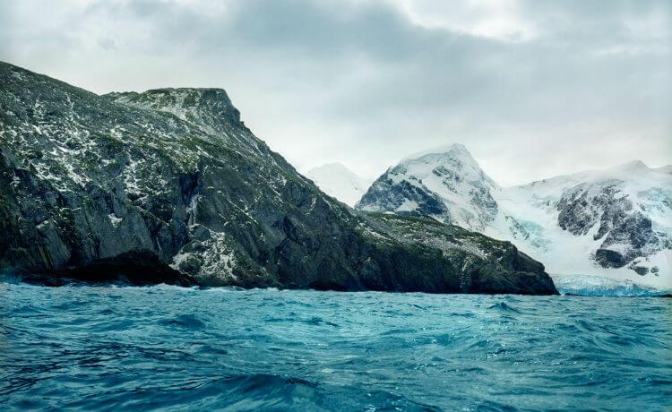 Antártida: musgos com mais de cinco mil anos