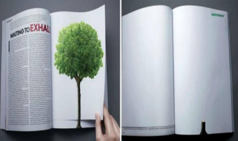 O desmatamento continua, mesmo quando a página muda