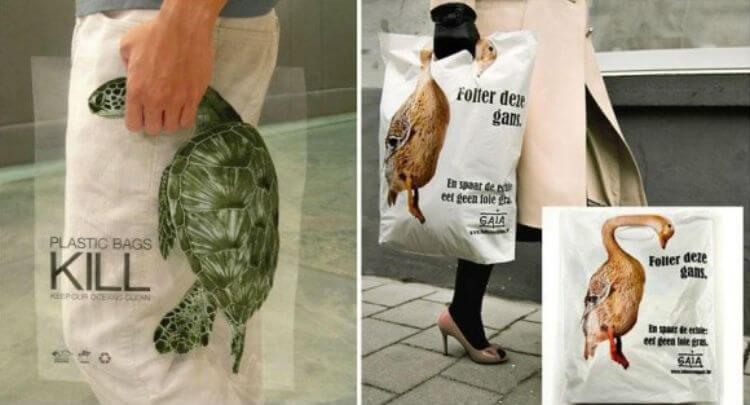 Sacos plásticos matam animais