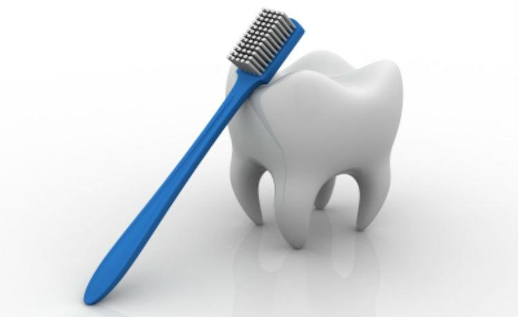 Dente e escova