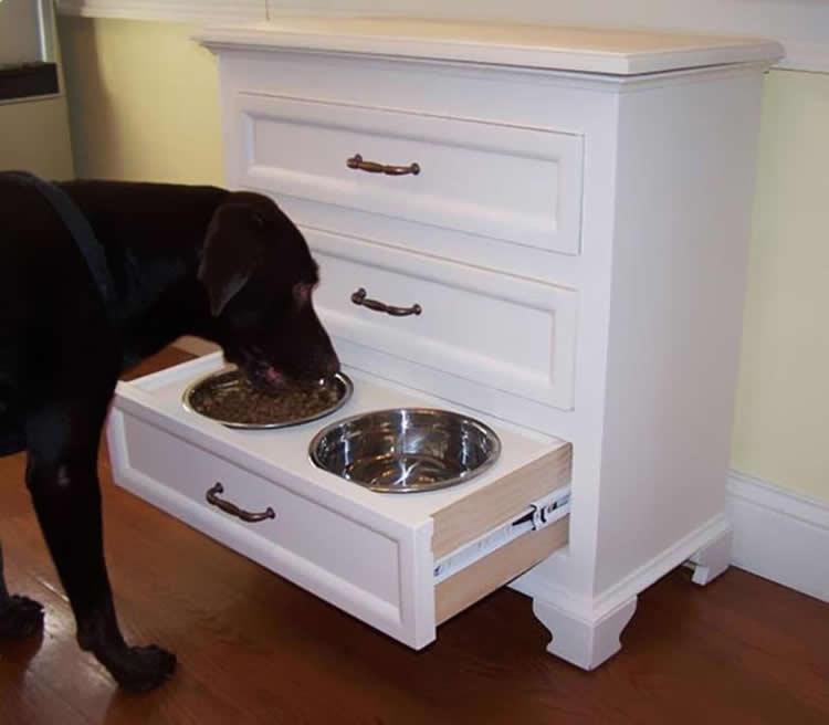 Deixe a comida e a bebida de seu cachorro fora do caminho com essa ideia