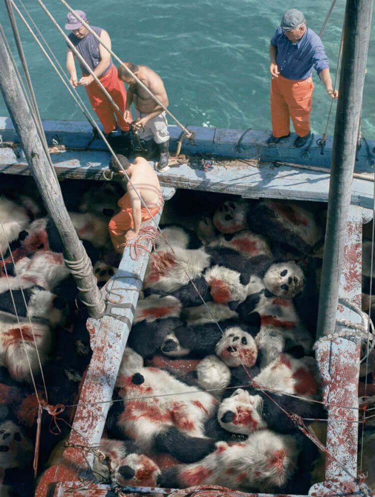 Quando você vir um atum, pense em um panda