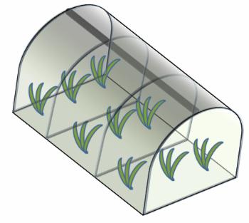 Protegendo a horta do frio e vento com túneis