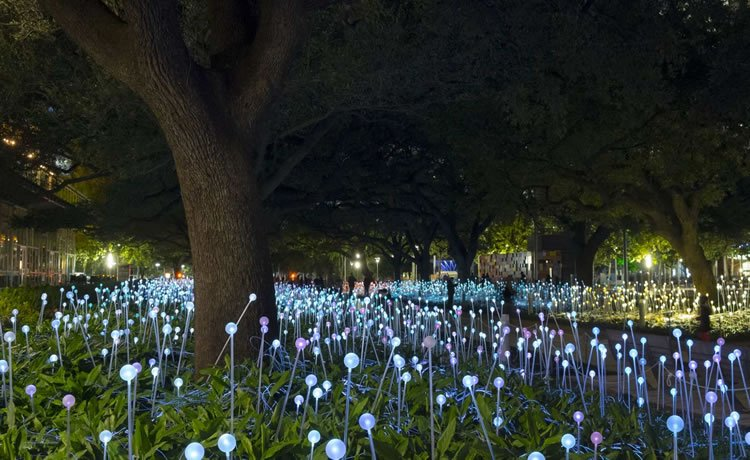 "Jardins luminosos"", Discovery Green, Houston TX, USA 2014"