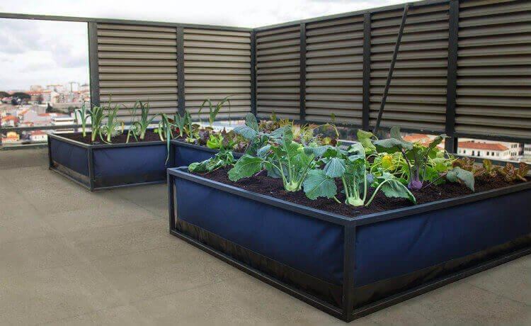 Growbed