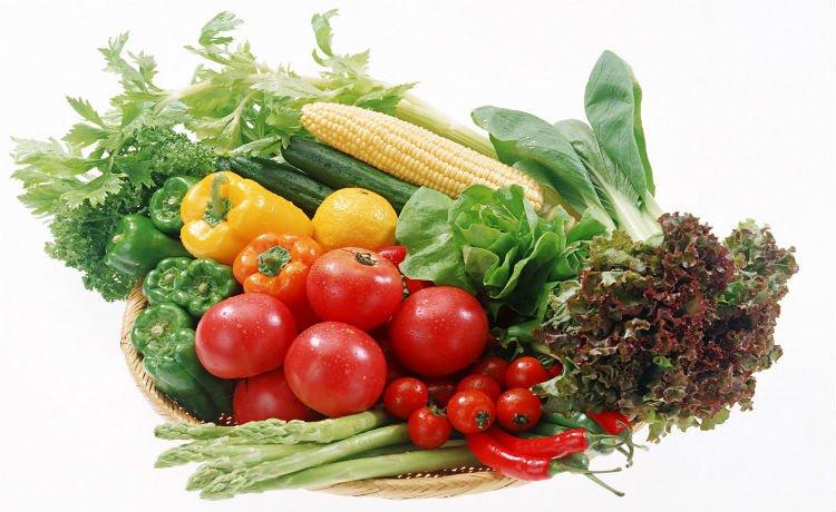 Verduras de horta orgânica