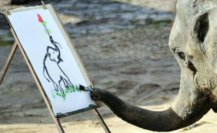 Elefante pintor