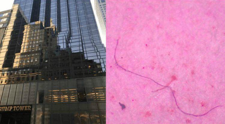 Microplásticos Trump Tower