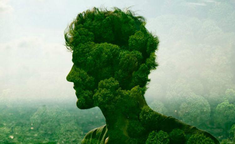 Imagens de Sustentabilidade