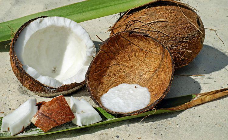coco seco