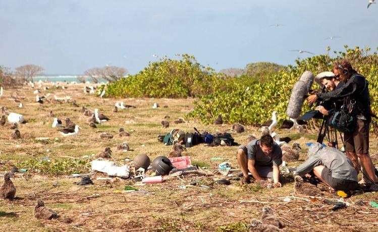 ilha de plastico oceano pacifico
