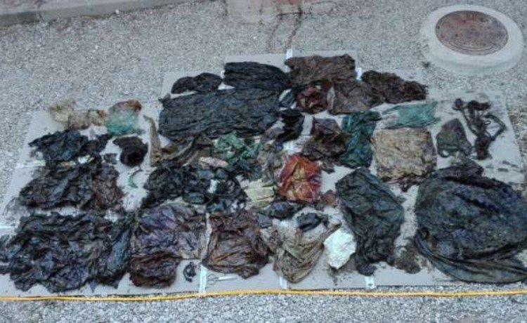 Lixo retirado do estômago da baleia