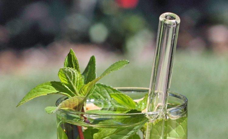 Fotografia colorida em area externa de um copo com folhas de hortelã e um canudo de vidro. Atrás do copo, o que parece um campo de grama desfocado.