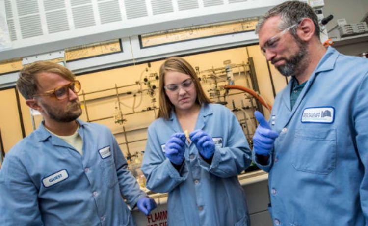 Cientistas que criaram o plástico PDK