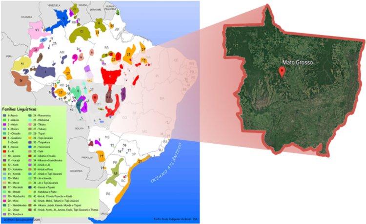 Comparativo do recorte do mapa das famílias linguísticas indígenas do Mato Grosso com a cobertura vegetal do Estado