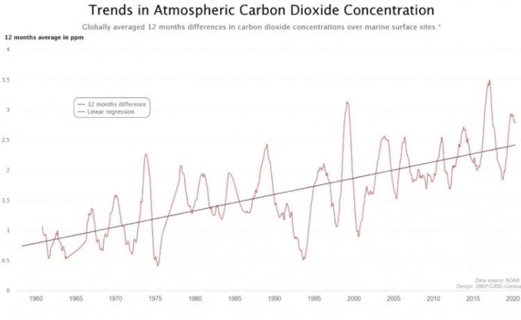 Gráfico CO2