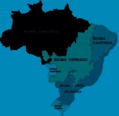 bioma amazônico