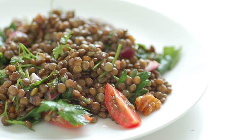 fontes de proteína vegetal