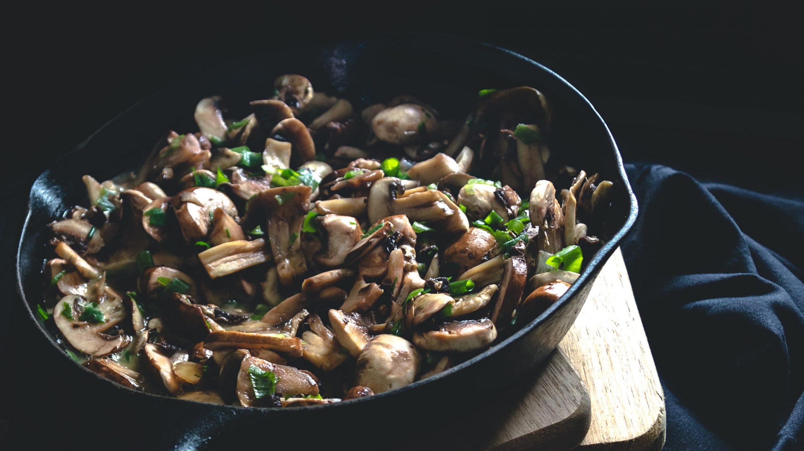 receitas com champignon