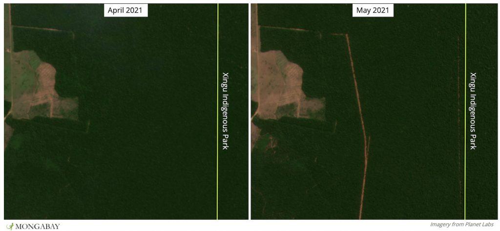 Imagem de satélite mostra Parque Indígena do Xingu