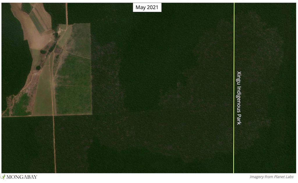 Parque Indígena do Xingu em 2020